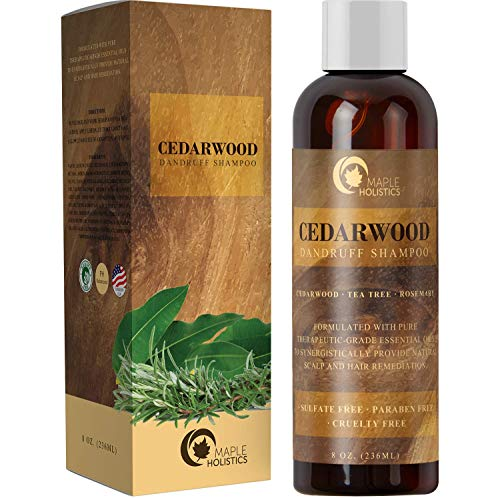 best natural shampoo for dandruff