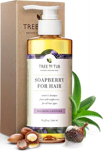cheap natural shampoo for dandruff
