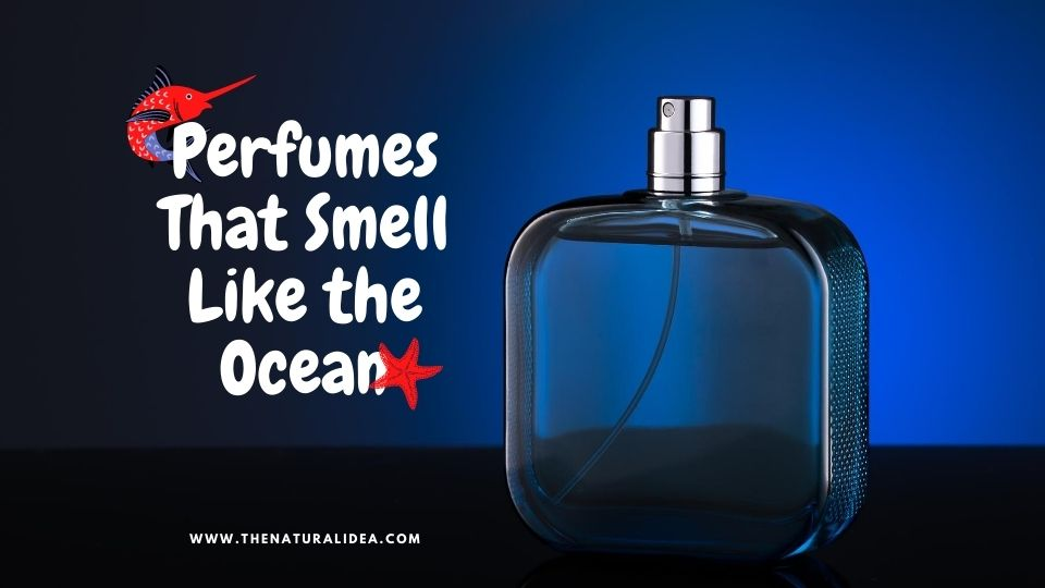 Perfumes That Smell Like the Ocean
