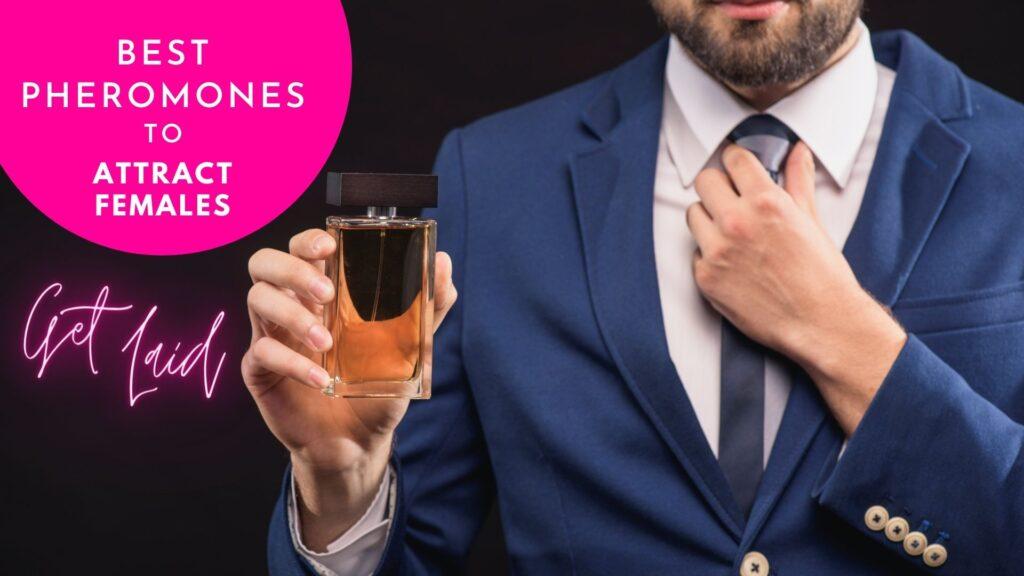 Best Pheromones To Attract Females